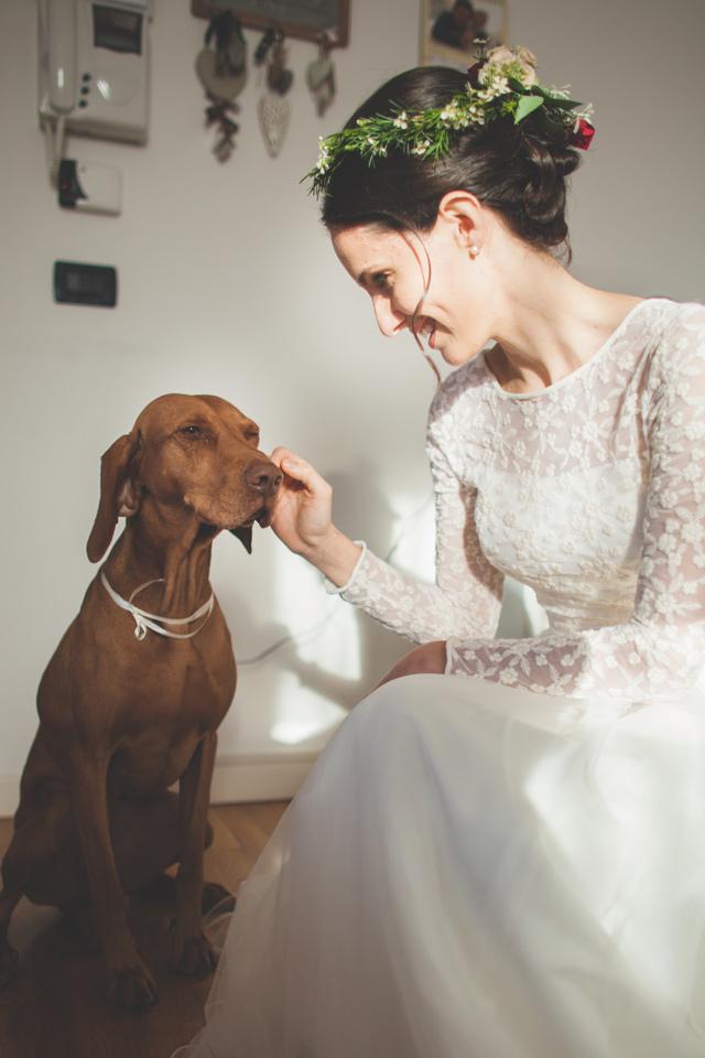 sposa con cane prima del matrimonio fotografia